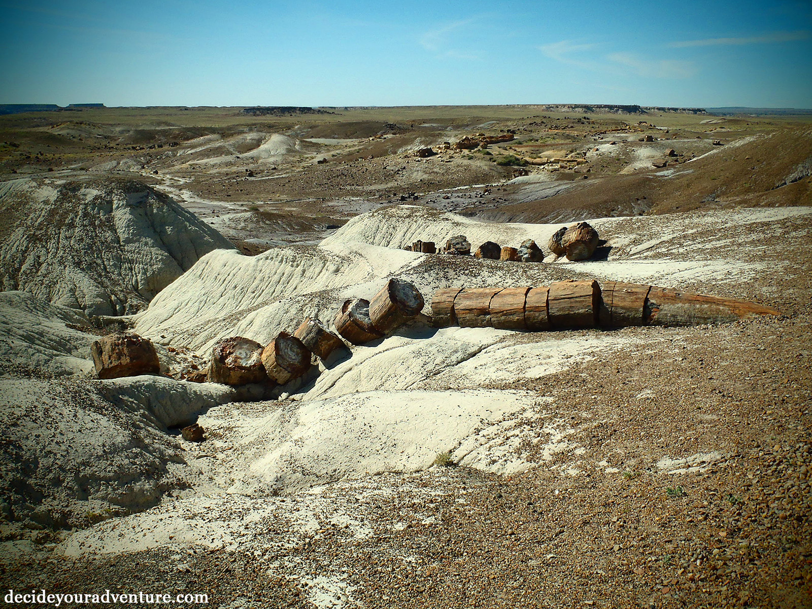 petrified forest natl pk milfs dating site Petrified forest natl pk's best 100% free online dating site meet loads of available single women in petrified forest natl pk with mingle2's petrified forest natl pk dating.